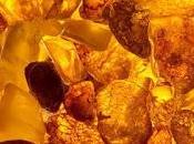 viaggi mediterranei dell'ambra