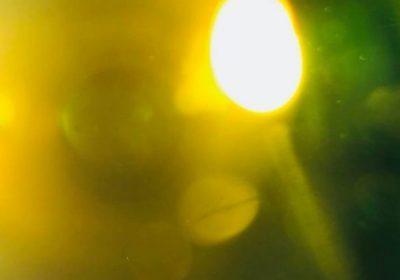 l'FBI fa chiudere Il National Solar Observatory, Gli ufologi: Fotografato qualcosa di grosso vicino al Sole