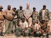 Principe William Namibia combattere bracconaggio Kate diventa gelosa