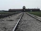 Arbeit Macht Frei: Auschwitz-Birkenau