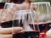 Amarone della Valpolicella: storia caratteristiche vino nato errore