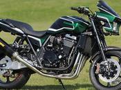 Kawasaki 1200 DAEG Active