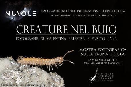 """Mostra Fotografica """"CREATURE NEL BUIO"""" a NUVOLE-CASOLA 2018, fotografie di Valentina Balestra e Enrico Lana"""
