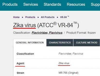 Zika virus (ATCC® VR-84™): un virus brevettato e la guerra biologica