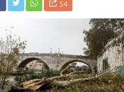 Monitoraggio degli alberi inaffidabile. milioni mezzo euro buttati!