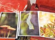 Come imprimere delle foto legno