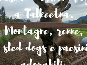 Alaska: Anchorage Talkeetna. Montagne, renne, sled dogs paesini adorabili.