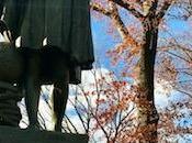 Visitare bici Central Park Manhattan, York: cosa vedere