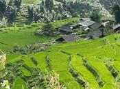 Sapa: trekking risaie minoranze etniche Vietnam