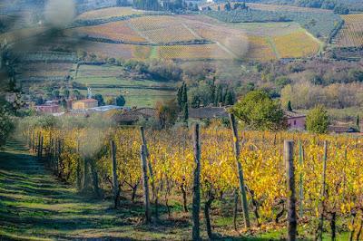Autunno nell'Azienda Agricola Manetti Leonardo nel Chianti Classico