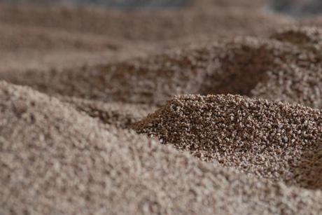 biomassa.jpg
