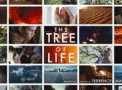 "foto ""The Tree Life"" Terrence Malick"