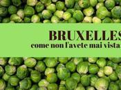 Fine settimana Bruxelles, così grigia come immagina