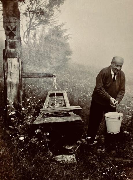 Mondo e rimandi. Heidegger e il pensiero sistemico. Di Andrea Tagliaferri