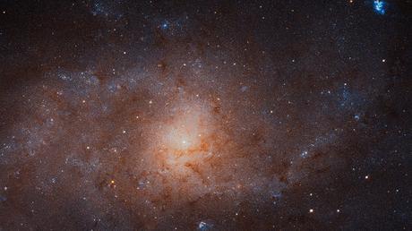 La Galassia Triangolo in posa per Hubble