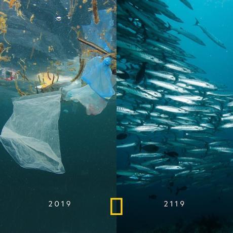 La 10 years challenge del pianeta