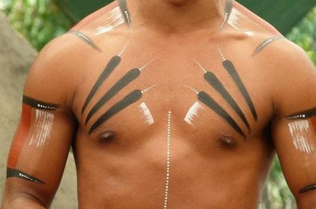 I tatuaggi zebrati tengono lontani mosche, zanzare e altri parassiti succhia sangue