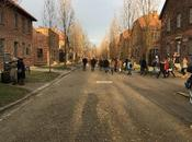 Auschwitz-Birkenau: viaggio passato occhi presente
