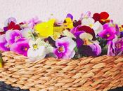 Fiori zuccherati vegani: come preparare candied flowers vegan casa