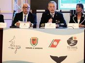 "Campagna ""Cetacei, Attenzione! 2.0"" Tethys ONLUS Guardia Costiera"