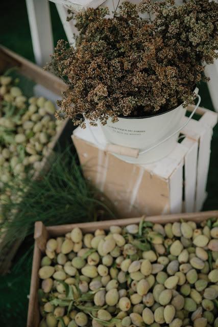 Intrecci eucalipto ulivo: cake topper