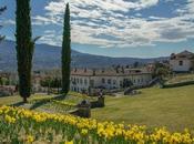 Narcisi Villa Della Porta Bozzolo