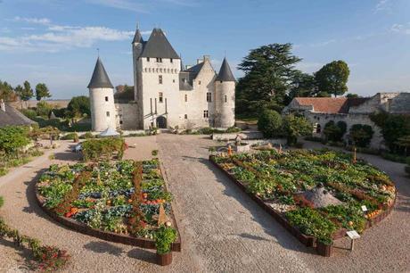 I tulipani del Castello di Rivau