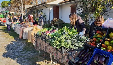 Ritorna il Mercato contadino a Campolessi di Gemona