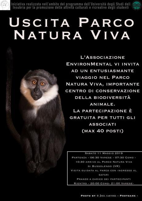 al PARCO NATURA VIVA di Bussolengo (Verona). Percorso naturale e culturale a cura della Associazione ENVIRONMENTAL, Università degli Studi dell'Insubria di Como e Varese