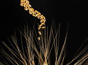 Cnr. Pubblicato 'Nature Genetics' genoma frumento duro