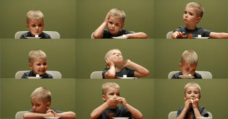 Il Test del Marshmallow di Walter Mischel, intervista al Prof.Paolo Legrenzi