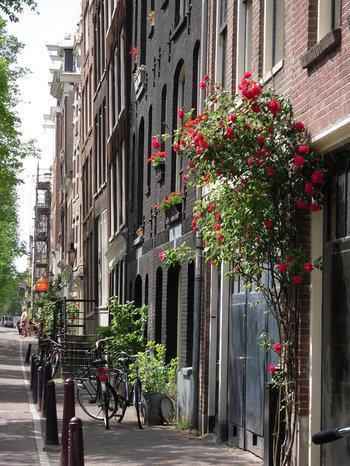 Amsterdam jordaan giardini e fiori paperblog - Giardini e fiori ...
