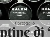 cantine Porto: degustazioni porto tutte info utili