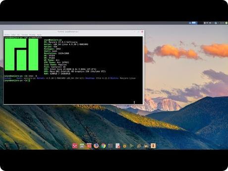 Guida a Manjaro Linux: installazione, passaggi preliminari e preparazione di un sistema EFI.