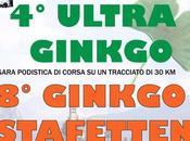 Castello Fiemme (TN): Ginkgo Stafetten Ultra Ginkgo, agosto 2019