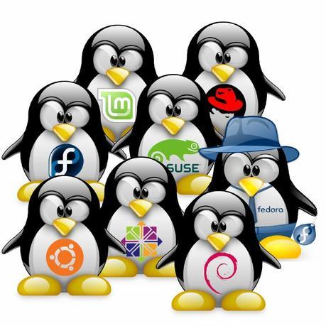 Più pinguini