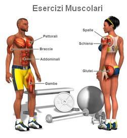 quali esercizi mi aiutano a perdere peso più velocemente