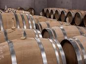 vino invecchiato veramente piu' buono?