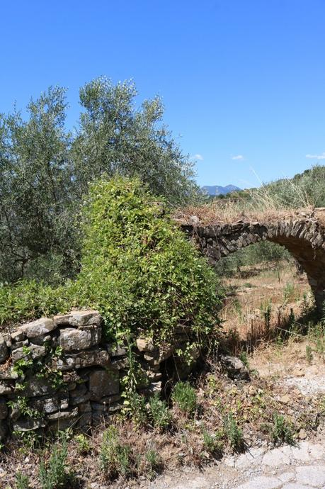 Dolceacqua (IM): Località Morghe
