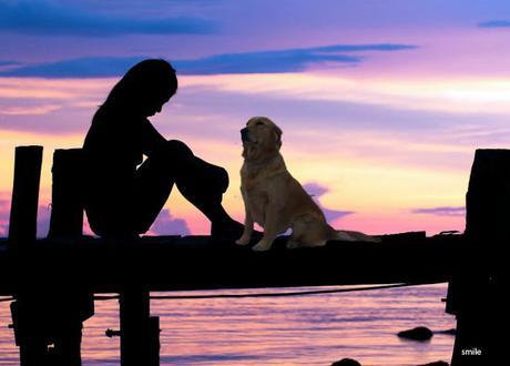 Per il tuo cane tu sei il mondo, non abbandonarlo.
