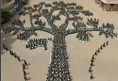 Del giorno 28 giugno 2011 : un albero umano per difendere la foresta