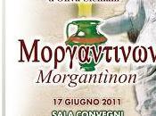 Marketing storia dell'olivo dell'olio, appuntamenti Sicilia.