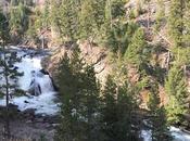 Visitare Yellowstone: cosa vedere nella regione Geyser lago