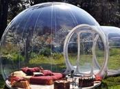 Bubble Room: un'esperienza relax alberi stelle