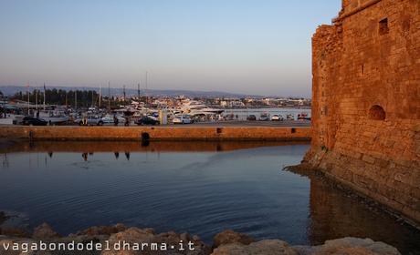 Cipro per caso