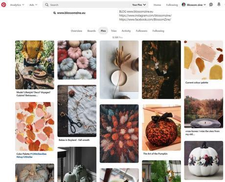 L'autunno è la mia stagione preferita su Pinterest