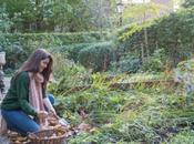 Giardinaggio tranquillità