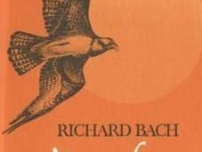 """""""Nessun luogo lontano"""" Richard Bach: essere liberi senza libertà"""