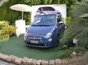 dipinto blu: Fiat Twinair Party!
