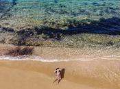 belle spiagge Mykonos:
